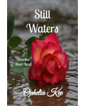 Still Waters A Draoithe Saga Short Read's Ebook Image