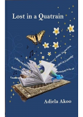 Lost in a Quatrain's Ebook Image