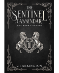 The Sentinel of Cassendar: The High Captain's Ebook Image