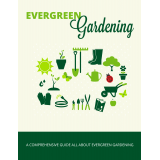 Evergreen Gardening (A Comprehensive Guide All About Evergreen Gardening) Ebook's Ebook Image
