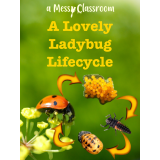 A Lovely Ladybug Lifecycle's Ebook Image