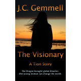 The Visionary's Book Image