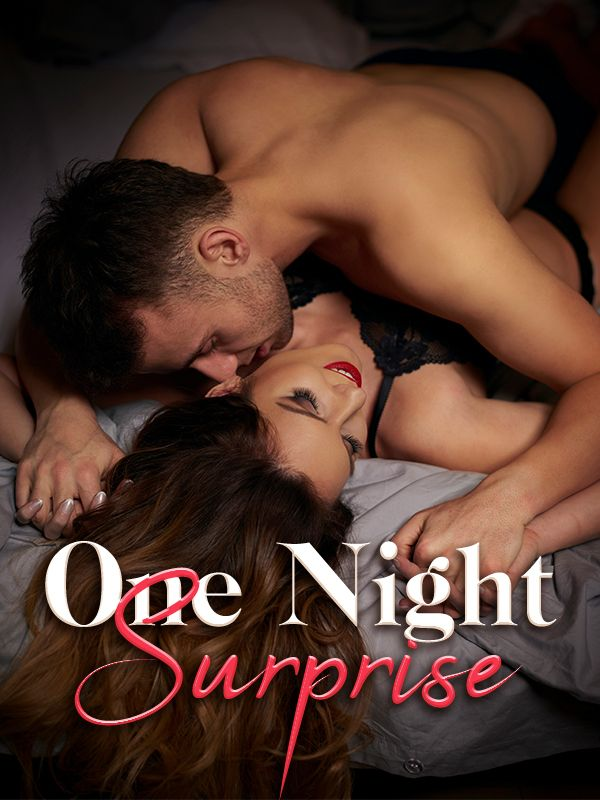 One Night Surprise's Book Image