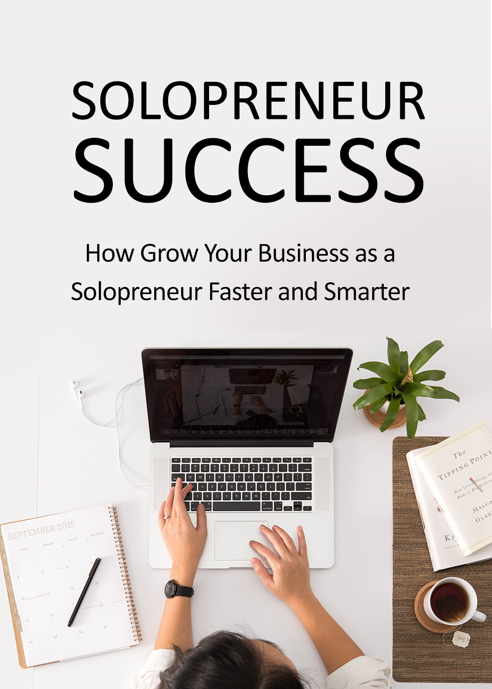 Solopreneur Success: How to Grow Your Business as a Solopreneur Faster and Smarter eBook's Book Image