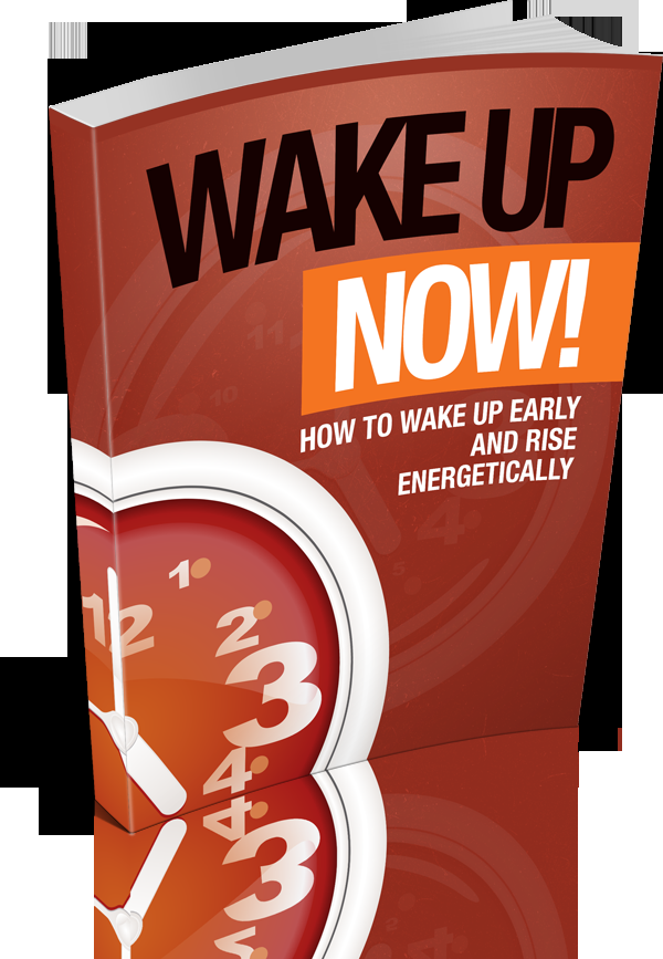 Wake Up Now!'s Book Image