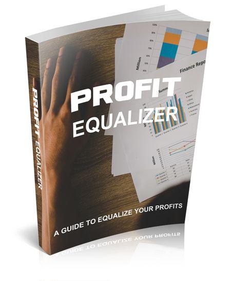 Profit equalizer's Book Image