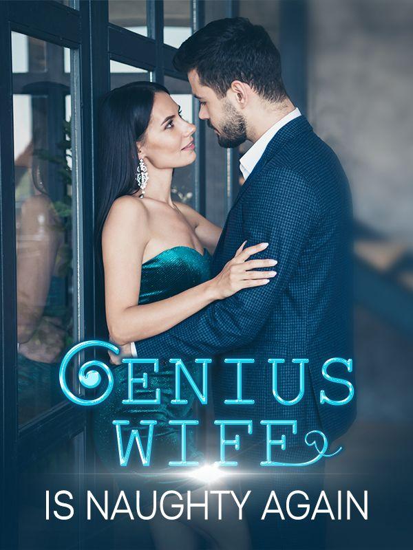 Genius Wife Is Naughty Again's Book Image