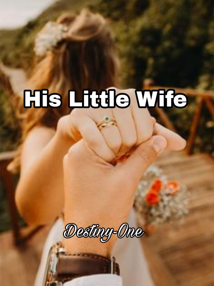 His Little Wife's Book Image