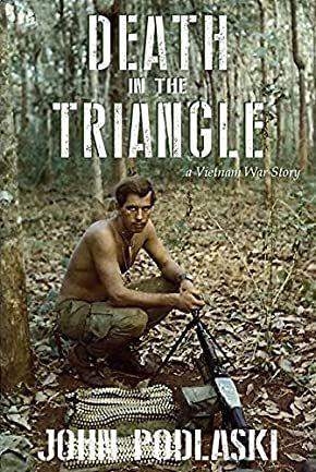 Death in the Triangle: A Vietnam War Story's Book Image