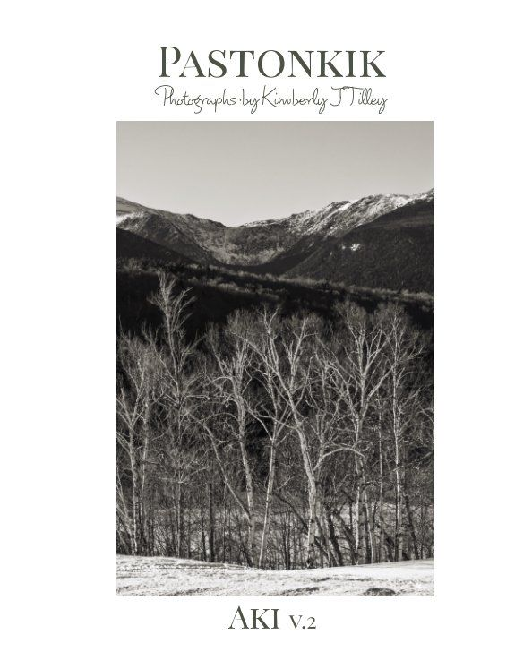 Pastonkik: Aki v.2's Ebook Image