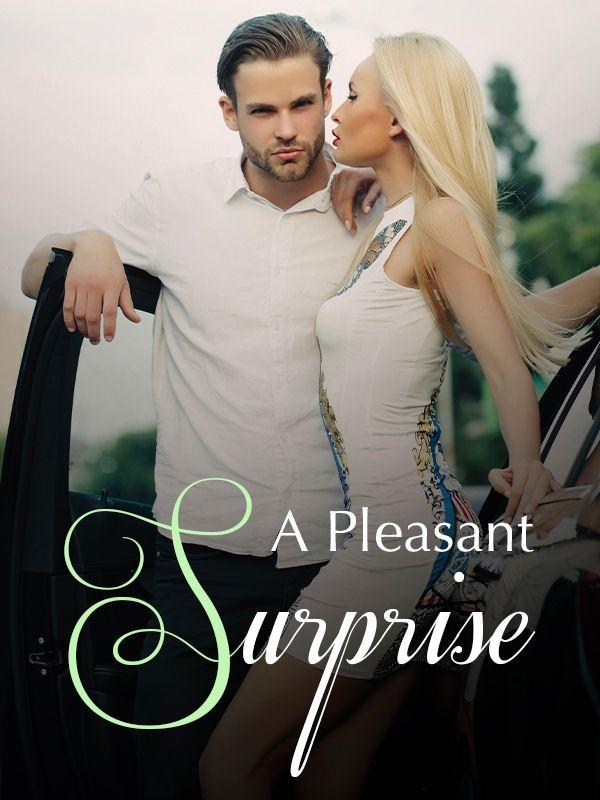 A Pleasant Surprise's Book Image