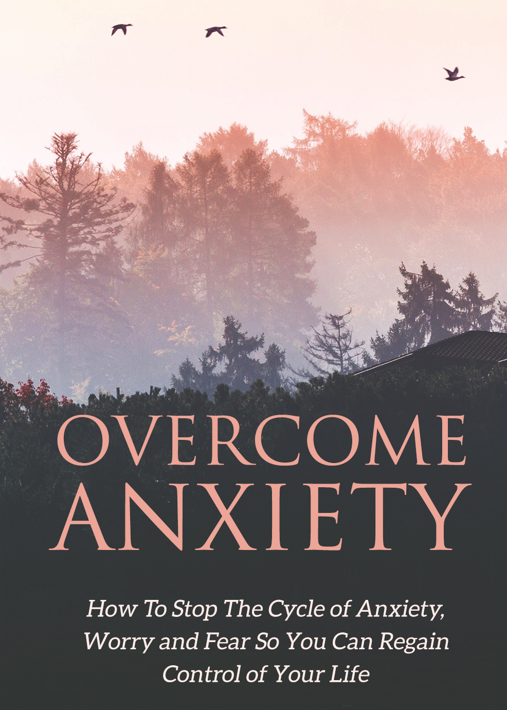 Overcome Anxiety (How To Stop The Cycle Of Anxiety, Worry, And Fear So You Can Regain Control Of Your Life) Ebook's Book Image