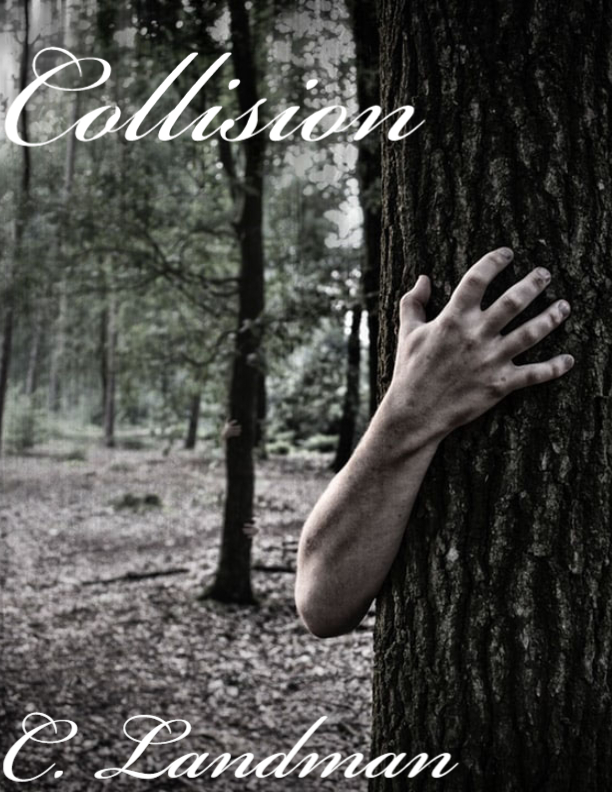 Collision's Ebook Image