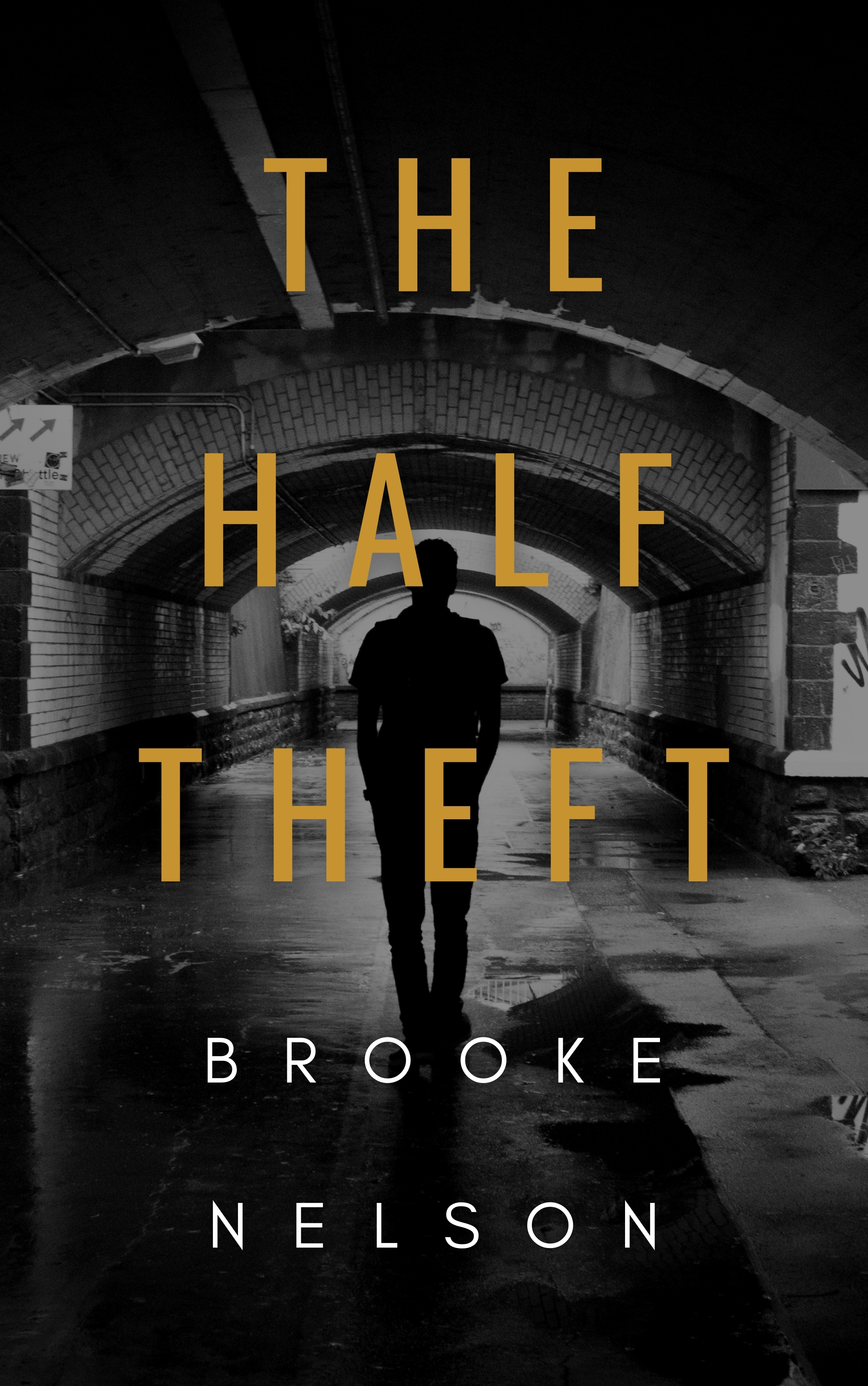 The Half Theft's Ebook Image