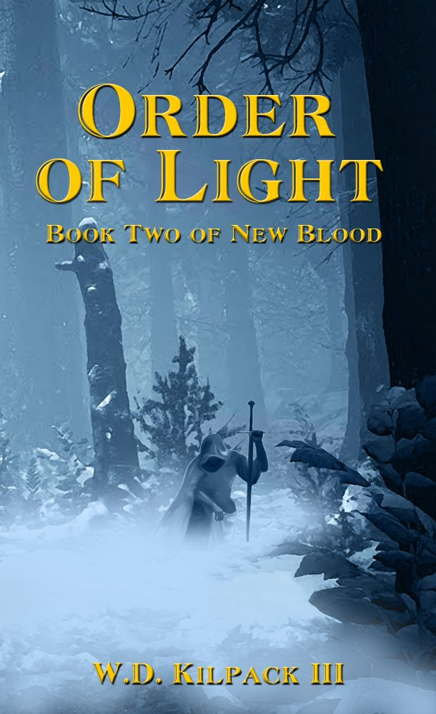 Order of Light: Book Two of New Blood's Ebook Image