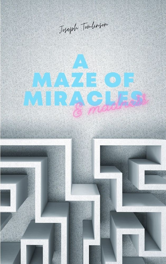 A Maze of Miracles & Madness's Ebook Image