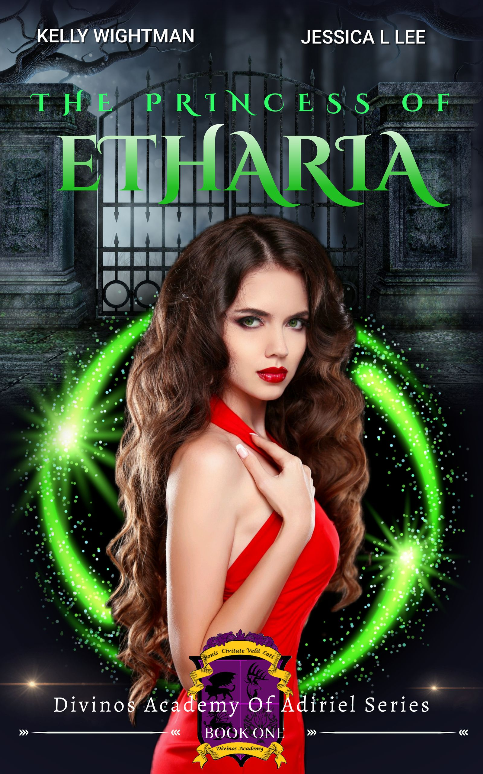 The Princess Of Etharia : A Fantasy Academy Bully Romance: (Divinos Academy of the Adiriel Series - Book 1)'s Ebook Image
