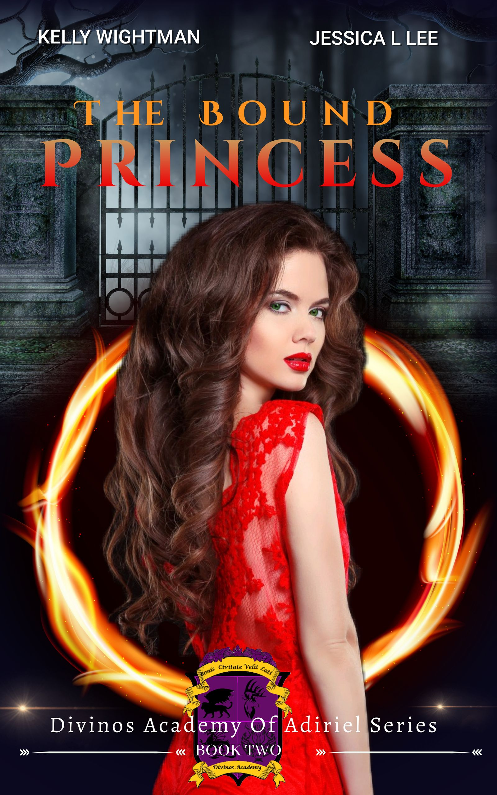 The Bound Princess: A Fantasy Academy Bully Romance: (Divinos Academy of the Adiriel Series - Book 2)'s Book Image