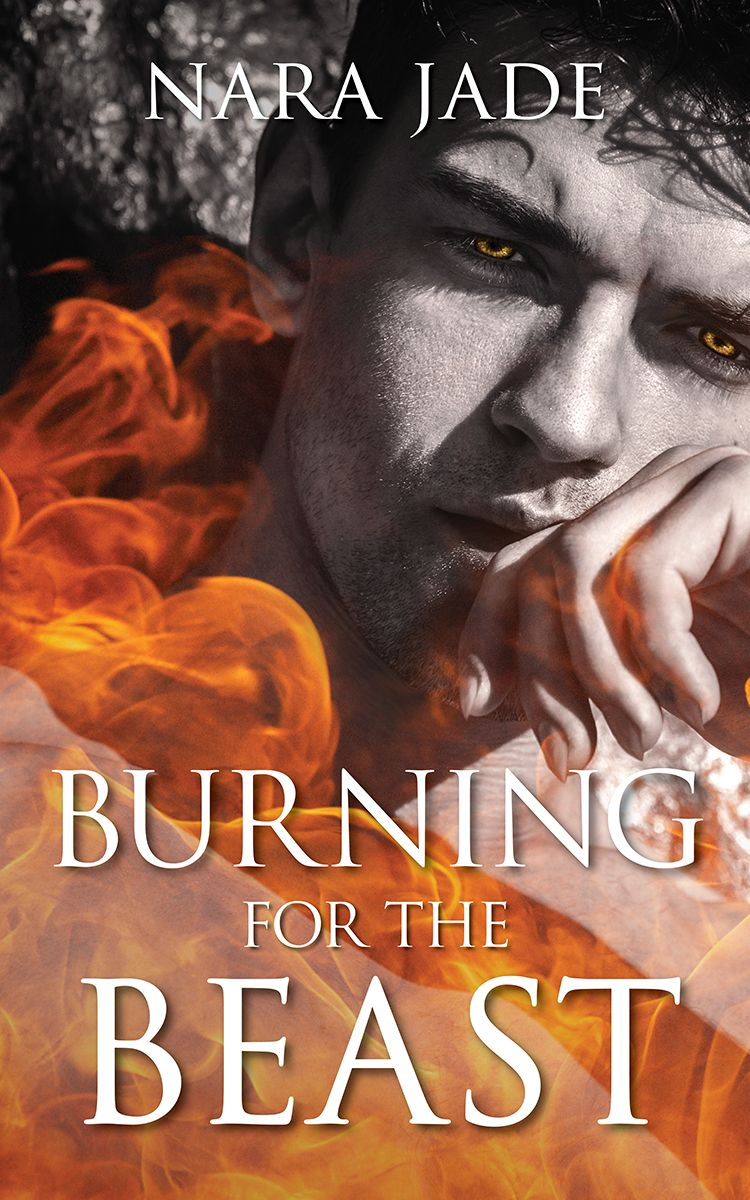 Burning for the Beast's Book Image