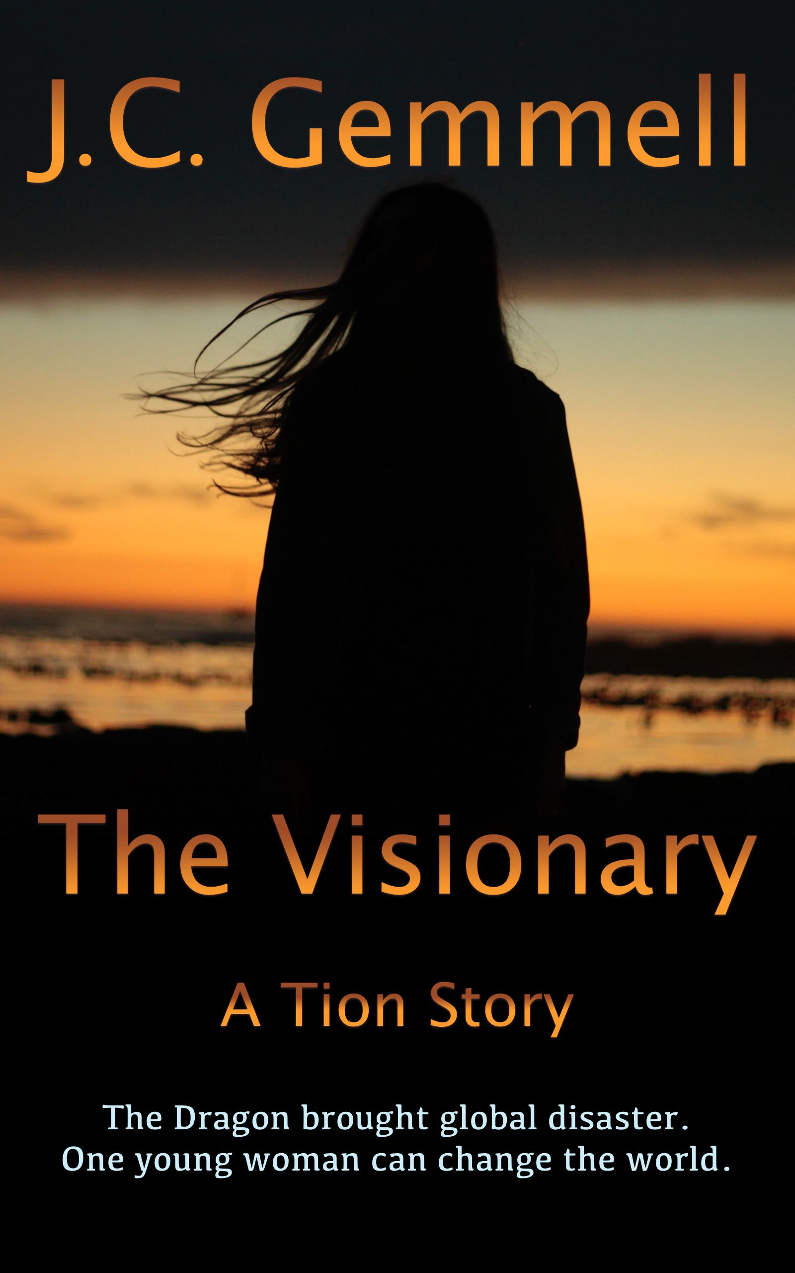 The Visionary's Ebook Image